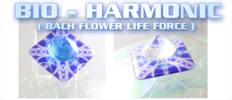 top-bio-harmonic-bach-flower